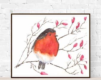 Original watercolor painting-Robin-robin bird illustration-nursery art-original painting-baby shower-nature illustration-zen watercolors