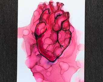 Color Study Anatomical Heart