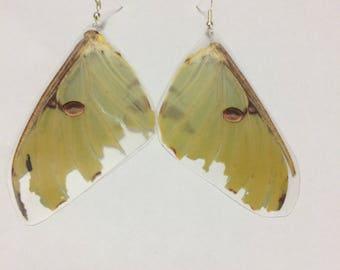 Luna Moth Earrings (Top, Large)