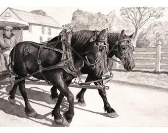 Mackinac Horse Drawn Carriage