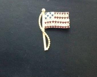 Beautiful flag pin