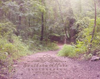 Trail through mountains