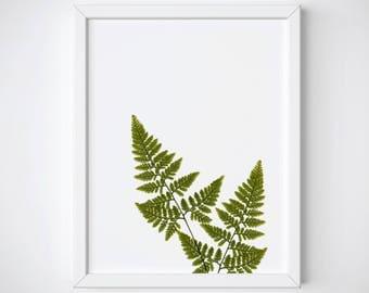 Fern Leaf Art Print, Fern Leaf Wall Art, Botanical Art Print, Fern Botanical Printable, Botanical Wall Art, Fern Wall Decor, Fern Poster