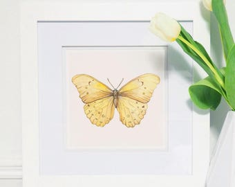 6x6 in Yellow Butterfly Watercolor