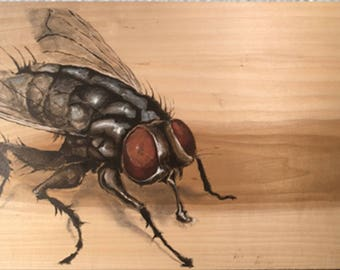 Insects on wood panels