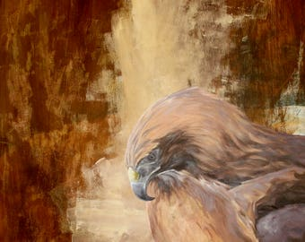 "Red Tailed Hawk Gaze - Oil Paint on Board 16"" x 20"" by Joel Kratter Art"