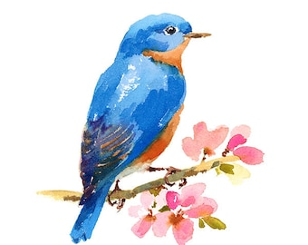 Bluebird On Cherry Blossoms Branch Watercolour Painting Q14