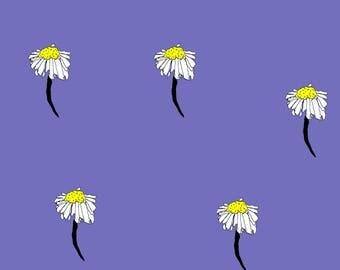 Purple Daisy