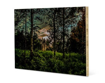 Mystic woods landscape wall art, printed on bamboo panel