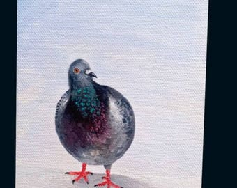 Greeting Card- Winter Pigeon