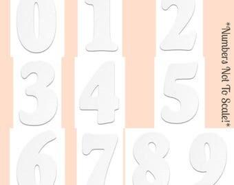"6"" Rosette Numbers"
