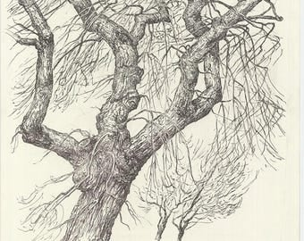 ORIGINAL DRAWING Tree in the wind. Pen drawing on paper. Colours: ecru and black. Tree lanscape. Realistic art. Signed by artist.