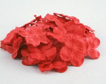 Red Hydrangea Pbc122