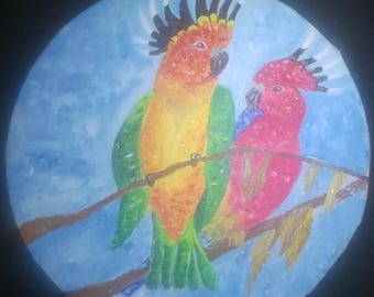 Couple of thousand color parrots