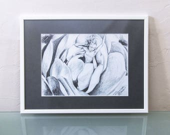 Original Illustration Box // Drawing graphite pencil // Faerie Style // Flower Camellia