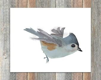 Tufted Titmouse Bird Print
