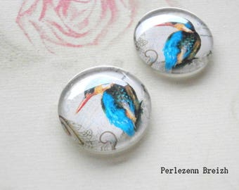 Set of 10 illustrated glass Kingfisher 20mm round cabochons
