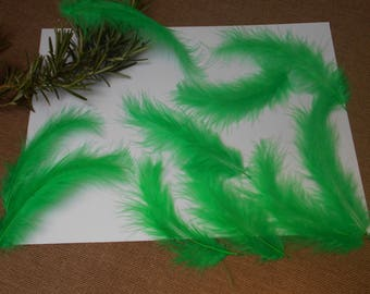 10 feathers - green d ' about 11cm