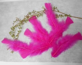10 feathers Fuchsia about 15 cm