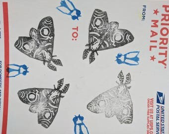 Lincocut sticker of moths and flies (1 of 1)
