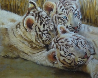 The 3 brothers, 50x50cm pastel portraits animal, Tigers