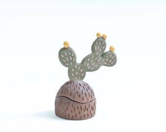 Cactus Box