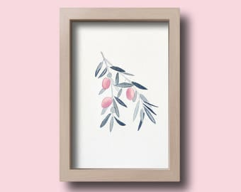 Olive Roses illustration