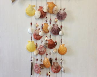 Exotic seashell wall hanging/wind chime