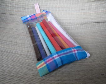 flat pencil case blue and transparent