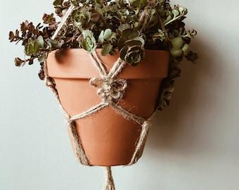 Jute Plant Hanger