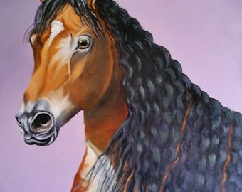 Pet portrait of a horse