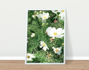 Printable Photography - Nature Photography - Flowers Photo - Printable Art
