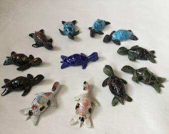 Turtle:  various colours and sizes