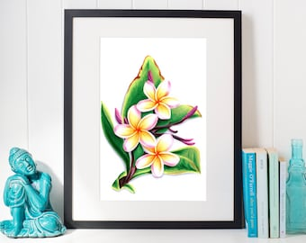 Hand-drawn poster with plumeria flowers
