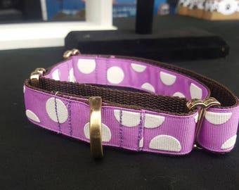 Martingale Collar - Purple w/ White Dot (Nylon)