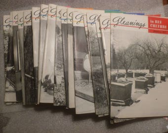 Gleanings in Bee Culture. 19 Vintage Copies of the Bee Keeping Magazine from 1957 to 1965