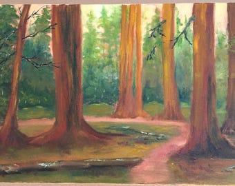 Redwood Walk Oil Painting