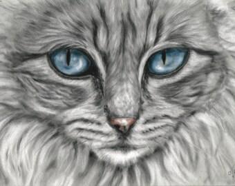 Cat Print - Cat Wall Art - Cat Gift - Grey Cat - Cat Picture - Animal Picture - Animal Print - Kitten Wall Art - Kitten Gift - Kitten Art
