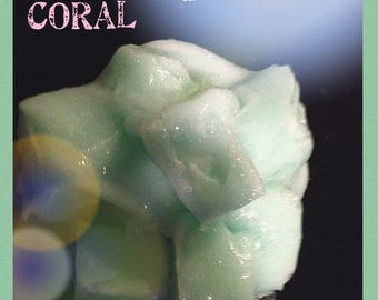 Coral - Jelly Cube Slime