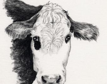 What a Pair Holstein Cows charcoal art original cattle farm