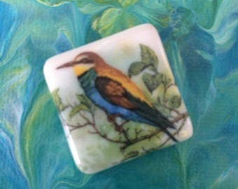 Bird on a Limb Fused Glass Cabochon with FREE Shipping in the USA
