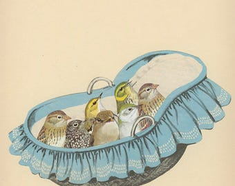 Baby birds. Original collage by Vivienne Strauss.