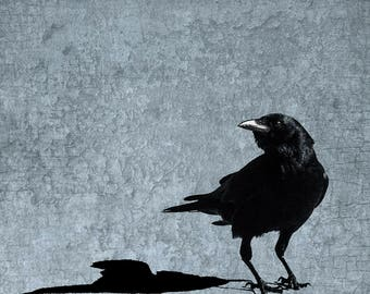 Me and My Crow Shadow - Silhouette on Sky Blue Background with Antique Texture - Signed Fine Art Photograph