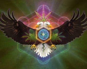 Cannabis Eagle ※ Bald Eagle Northwest Oregon Herbal Cannabis Weed Marijuana Plant Seed Life Wilderness Nature Earth