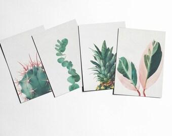 Plant Postcards With Envelopes, Leaf Art - Still Life