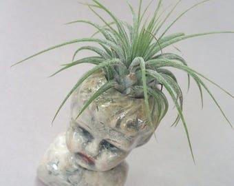 Baby Doll Air Plant vase or bud vase - Blonde