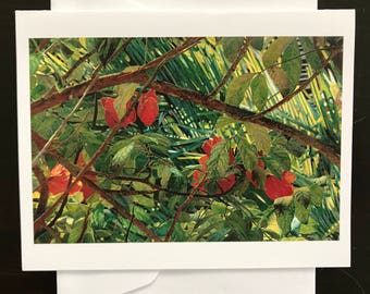 Watercolor Image Made Into Note Cards, Showing a Hibiscus Plant In A Jungle Of Tropical Foliage With Flowers by Janet Dosenberry