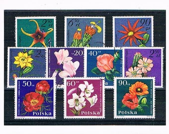 Colourful Flower Stamps, vintage Polish postage stamps | poppy, rose, flowering cactus etc - 1960s 1980s floral postal stamp collection
