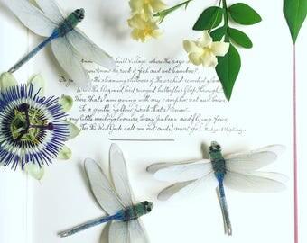 Silk Dragonfly hair clip with Swarovski Crystals. Wedding/Tea Party/Garden Party