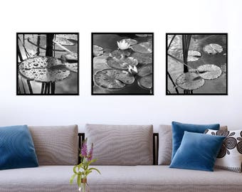 PRINT FILES-Lily black and white set- print it yourself wall art